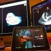Valencian Software Developer Aids Distance Healing On-Line Vets