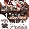 Truffles Fair in Andilla