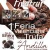 Truffles Fair in Andilla
